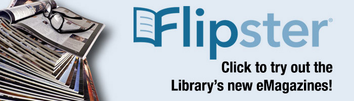 Flipster_new